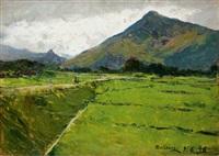 paesaggio by lorenzo delleani