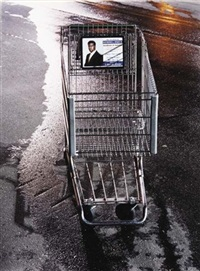 sykes shopping cart by tim davis