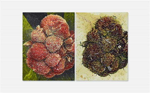biopsy painting m122/376, m122/377 (diptych) by damien hirst