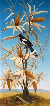 a magpie on a maize plant by andré quellier