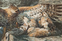 eagle feeding chicks by william simmons
