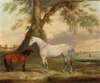 horse and pony by t.c. freeman