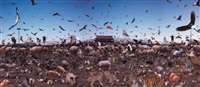 tiananmen, animal farm by chang lei
