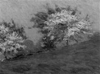 spring landscape by charles henry hayden