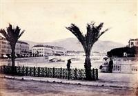 nice, quai des palmiers by charles nègre
