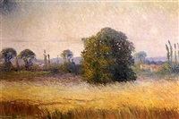 le champ de blé by marcel bach