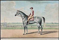 a grey racehorse and jockey by muhammad amir