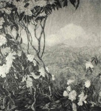 through the mountain laurel by dorothea m. litzinger