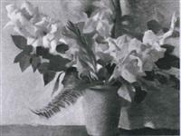 gladiolen by david r. buchanan