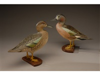 pair of standing blue-winged teal by ward brothers