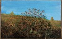 l'albero di cachi by antonio de la rosa
