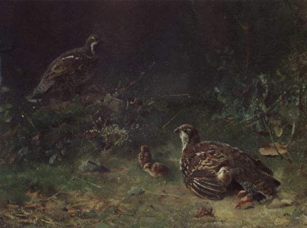 skogsfugl med unger by karl kristian uchermann