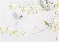blue flycathcer by atsushi uemura