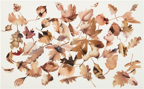leaf study white 2 by jonathan yeo