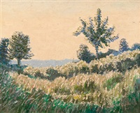 grassy landscape by norman lloyd