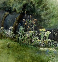 trees and wildflowers by frances anne hopkins