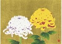 chrysanthemum by hoshun yamaguchi