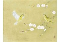 small bird by atsushi uemura