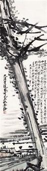 柏树 by xu shengweng