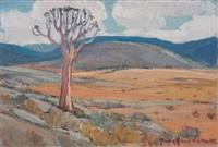 kokerboom, namakwaland by piet (pieter gerhardus) van heerden