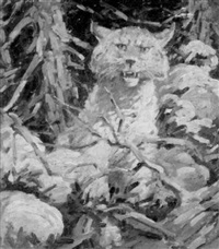 bobcat by h. boylston dummer