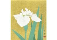 iris by hoshun yamaguchi