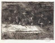 migrazione by oscar saccorotti