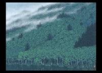 mountain mist by yukio toyama