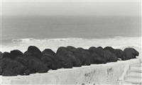 untitled (from the rapture series) by shirin neshat