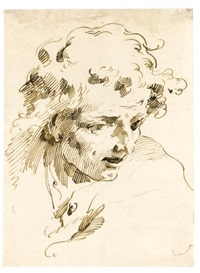 head of a young man by pietro antonio novelli