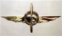 ali d'argento con corona - fiori viola- ed elica incrociata by gianni piacentino