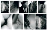 sexe de femme (9 works) by henri maccheroni