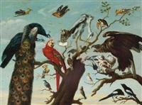a concert of birds: peacocks, a parrot, a herron, a tucan, pigeons, a vulture, magpies, a bat and various other birds on a tree branch by frans snijders