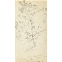 leaves, wild cherry...; principal hutton (?), oxford college; georgian bay island; moonlight, n.s.; high park and near kentville, n.s. (6 works) by james edward hervey macdonald