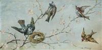 les oiseaux by firmin bouisset