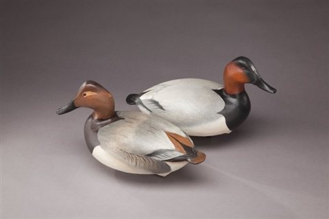 canvasback pair by lemuel t ward