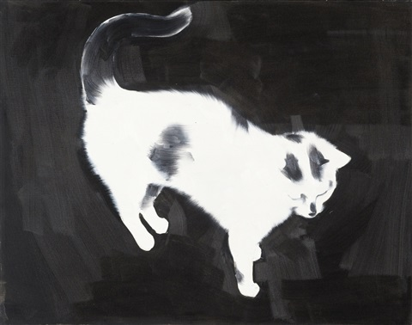 ohne titel katze by rafal bujnowski