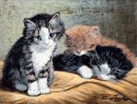 drie kittens by cornelis raaphorst