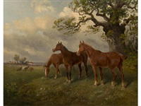 horses grazing beneath an oak tree by thomas smythe