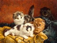 vier kittens by cornelis raaphorst