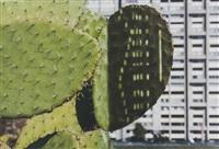 cactus score by anri sala