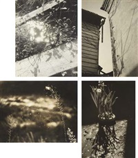 selected images (4 works) by shikanosuke yagaki