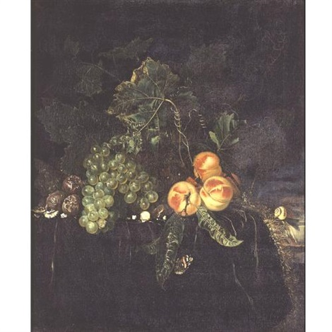 still life with peaches grapes on a draped ledge with a snail and butterfly by nicolaes lachtropius