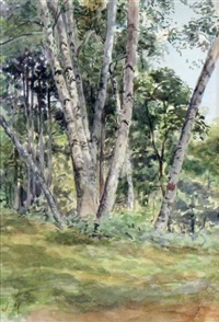 birch woods by james edward hervey macdonald