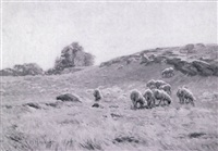 sheep pasture by charles henry hayden