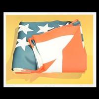 folded flag by mark adams