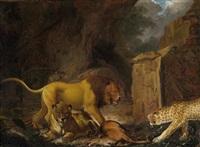 ein löwe mit seiner beute und ein leopard by carl borromaus andreas ruthart