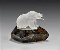 polar bear by peter muller