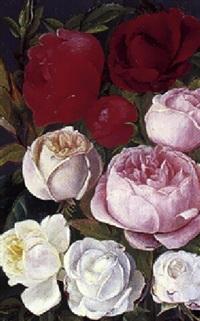 hvide, rode og lyserode roser by ida rasmussen