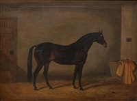 portrait of a bay, in a stable interior by edwin (of bath) loder